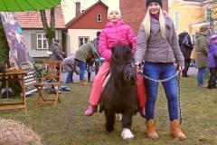 Ponisõit Viljandi Jõululaadal 10